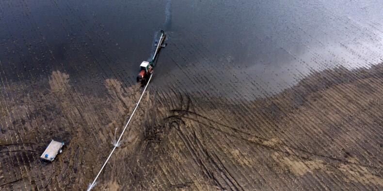 Entre inondations et guerre commerciale, les fermiers américains touchés mais pas abattus
