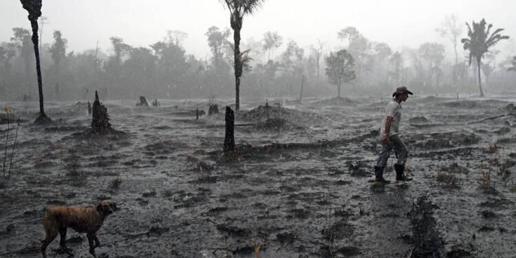 """Amazonie: le Brésil snobe l'aide du G7 et dit que les feux sont """"sous contrôle"""""""