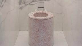 Le Trone : ces WC design français à 2.000 euros font fureur dans les grands hôtels
