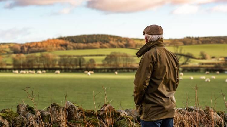 Retraite agricole : âge de départ, calcul et cotisations