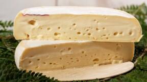 Attention, Lidl rappelle des lots de fromage potentiellement contaminés par Listeria