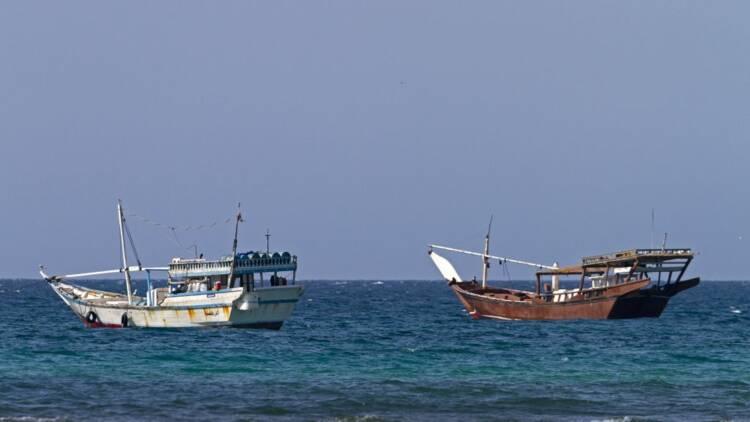 Des pêcheurs deviennent multimillionnaires grâce à une baleine au Yémen