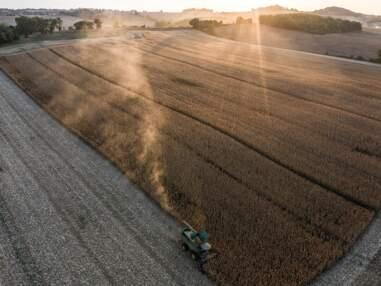 Visite de la PME familiale Nataïs, le leader européen du maïs à pop-corn