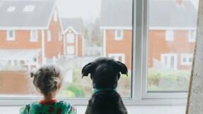 Immobilier : êtes-vous plutôt maison ou appartement ?
