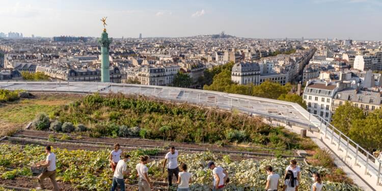 Entreprendre : et si vous vous lanciez dans l'agriculture urbaine?