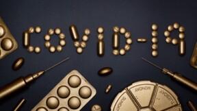 Ivermectine : la France passe-t-elle à côté d'un médicament efficace contre la Covid-19 ?