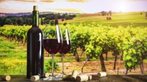 Bouteille de bordeaux à 1,69 euro : des viticulteurs manifestent contre Lidl