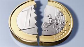 """""""L'explosion de la zone euro est de plus en plus probable, qui veut sa peau ?"""""""