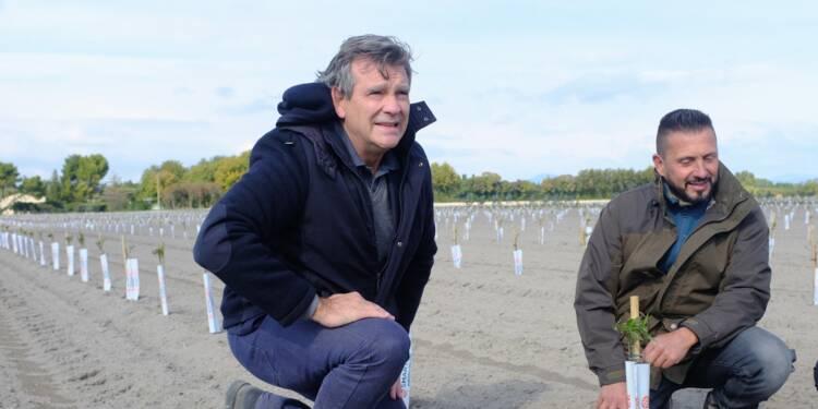 Les contradictions d'Arnaud Montebourg, entre politique et business