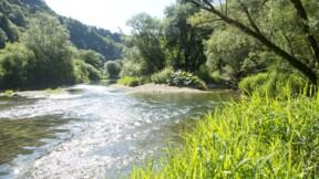 Doubs : un pari sur la limite des 10 kilomètres tourne mal