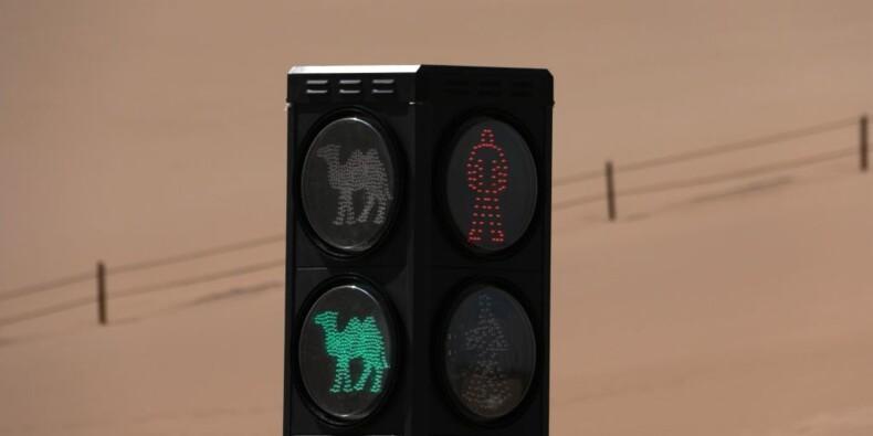 Chine : un improbable feu de signalisation installé dans le désert