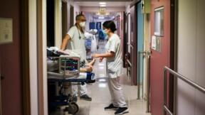 Hospitalisations Covid-19 : les espoirs de l'Institut Pasteur