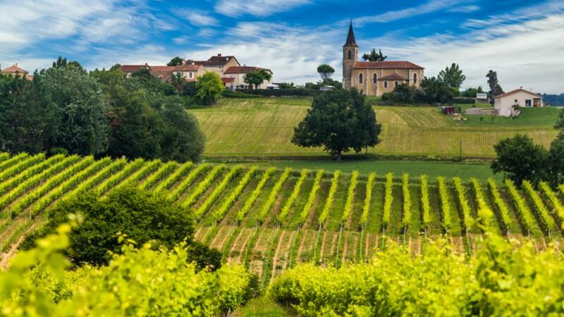 Forêts, vignes, maisons à la campagne : cette nouvelle plateforme qui identifie les prix autour de chez vous