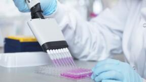 Bonne nouvelle face au Covid-19 : nos anticorps sont capables de tuer le virus