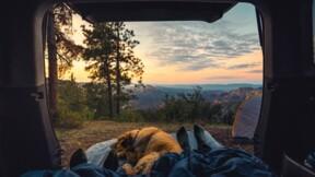 Yescapa, le spécialiste de la location de camping-cars entre particuliers