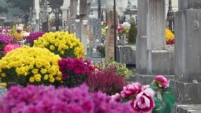 Un cimetière cible de vols à répétition