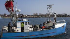Brexit : les pêcheurs français attendent encore leurs licences pour accéder aux eaux britanniques