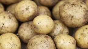 Alpes-Maritimes : attention à l'arnaque à la pomme de terre