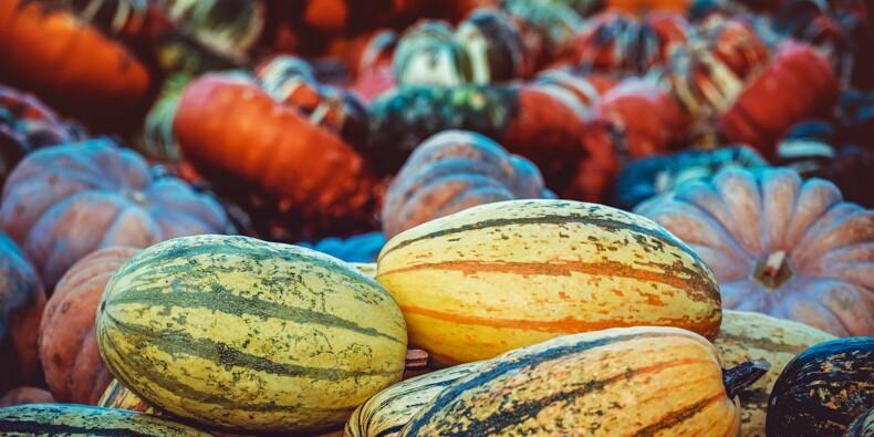 Le grossiste en fruits et légumes frais Omer-Decugis&Cie souhaite entrer en Bourse
