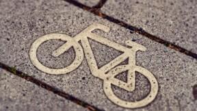 Reine Bike, le nouveau roi du VAE sera-t-il français?