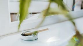 Les consommateurs de cannabis pourront désormais travailler chez Amazon