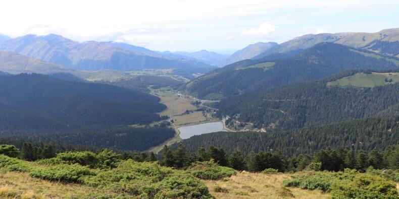 Eau de source en brique : la Compagnie des Pyrénées se lance dans un pari audacieux
