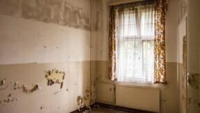 Passoires thermiques : faut-il obliger les propriétaires à rénover ?