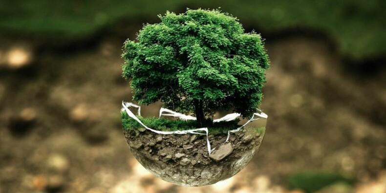 """Écologie : """"les entreprises sont les mieux placées pour changer le monde"""""""