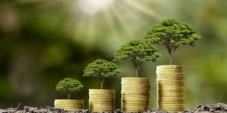 Placements verts : notre sélection de fonds les plus performants