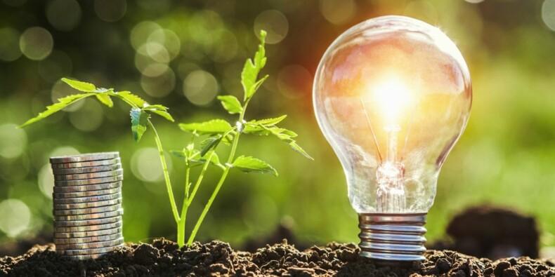 Immobilier, épargne, énergie... des économies à la clé en devenant écolo