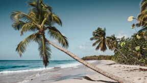Couvre-feu en Martinique et à La Réunion : peut-on obtenir un remboursement de ses vacances ?