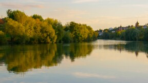 Marne, Oise, Aisne… le lourd impact des intempéries sur les récoltes