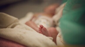 """Puy du Fou : un """"pass éternel"""" offert à un bébé"""