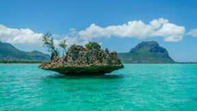 Ile Maurice : les infections au Covid-19 s'emballent !