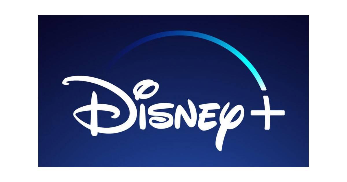 Streaming Disney Sort Le Grand Jeu Pour Concurrencer Netflix Fin
