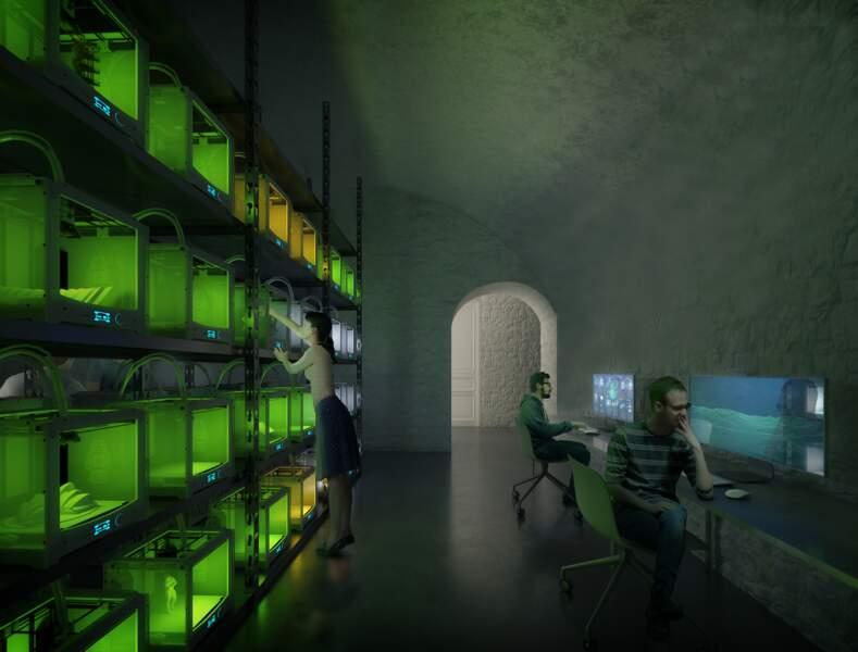 3 - Un atelier numérique dans les caves d'un hôtel particulier du Marais