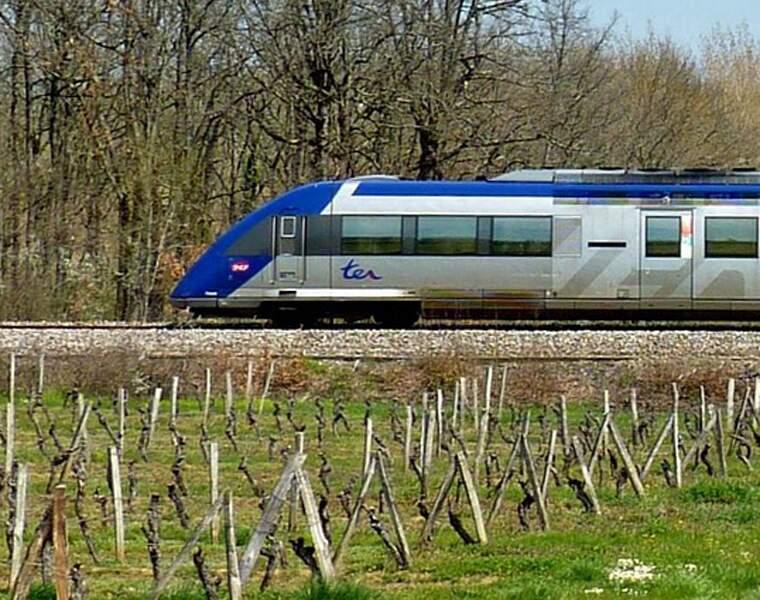 Le TER Oloron-Sainte-Marie à Bedous : 102 millions d'euros