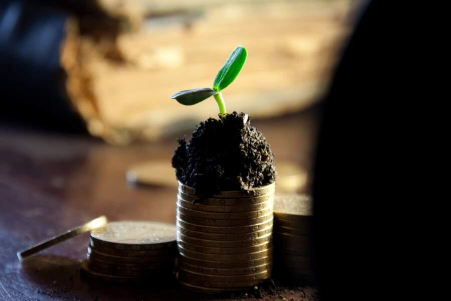 Toujours plus de dividendes pour les actionnaires !