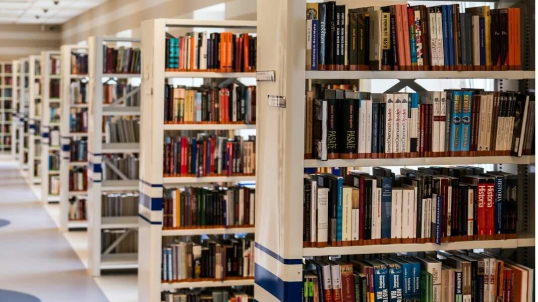 2. Bibliothécaire/documentaliste : 80% de chances d'être remplacé