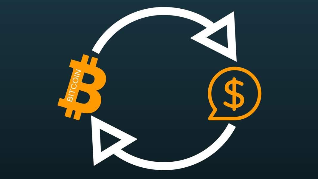 Février 2011 - Parité avec le dollar