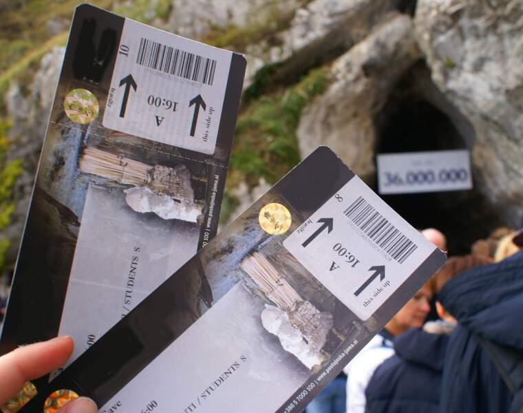 Les tickets d'entrée fictifs