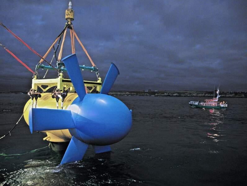 Sabella : développer la production d'énergie sous-marine