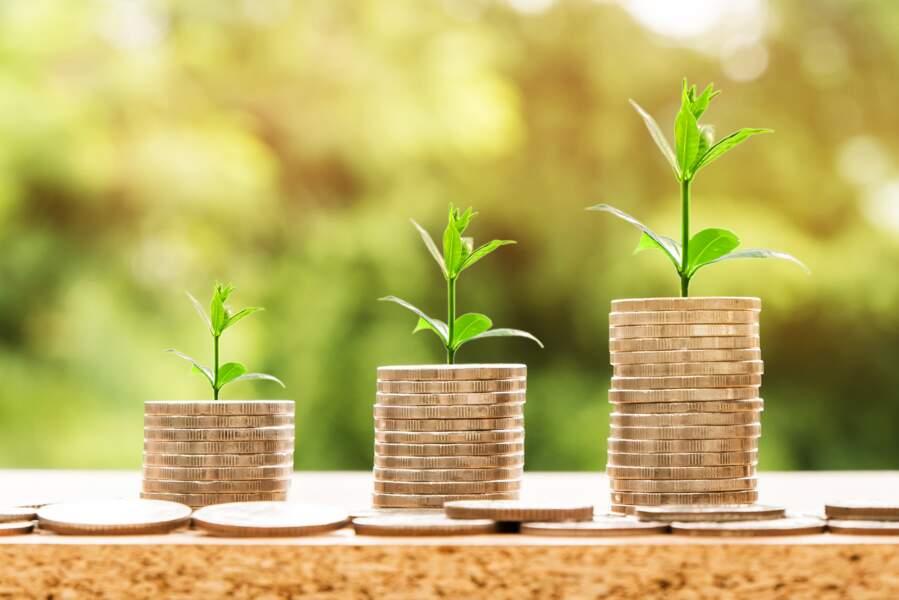 Un bond du chiffre d'affaires permis par une solide croissance organique !