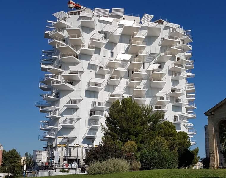 Vue panoramique sur Montpellier au sommet de l'Arbre blanc