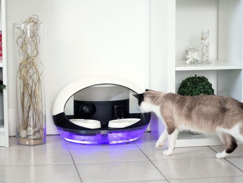 Catspad, la gamelle high-tech