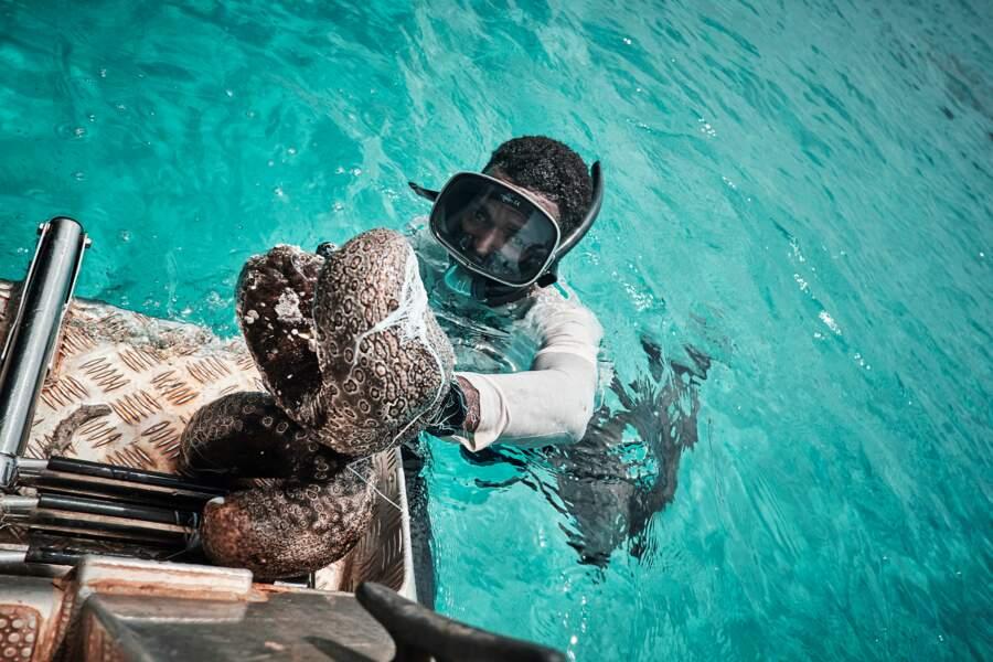 Des activités de pêche à fort potentiel