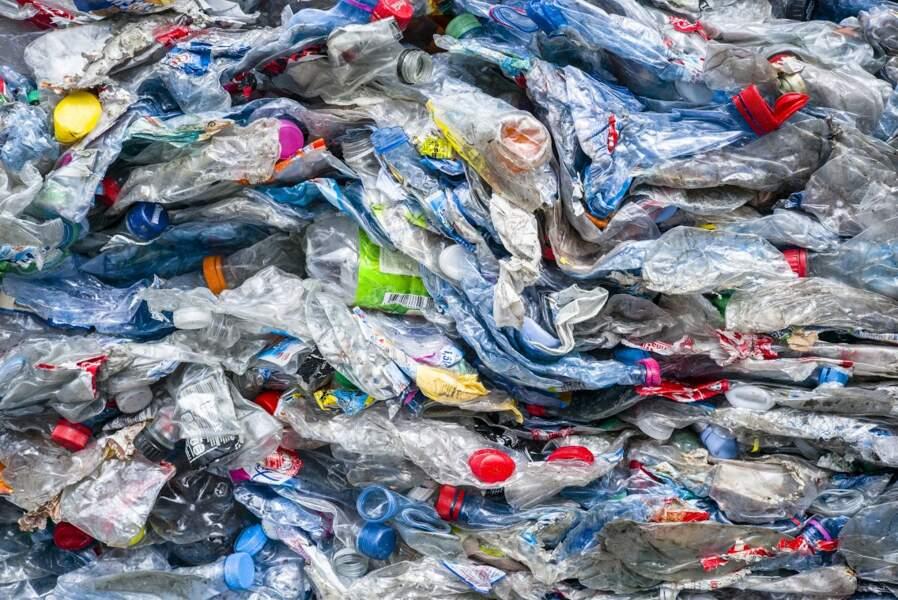 Des milliers de bouteilles plastique prêtes à être recyclées