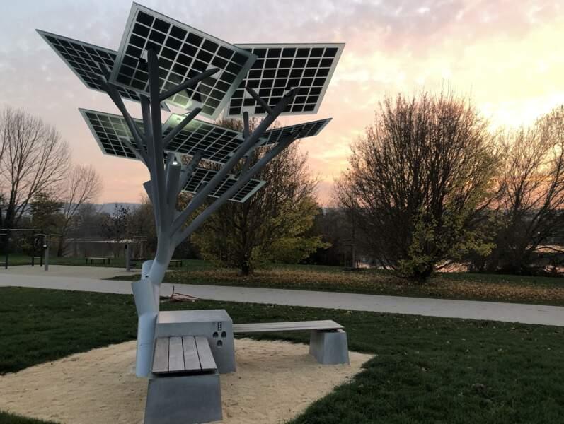 Solar Tree Europ : créer du lien social autour d'un objet écologique
