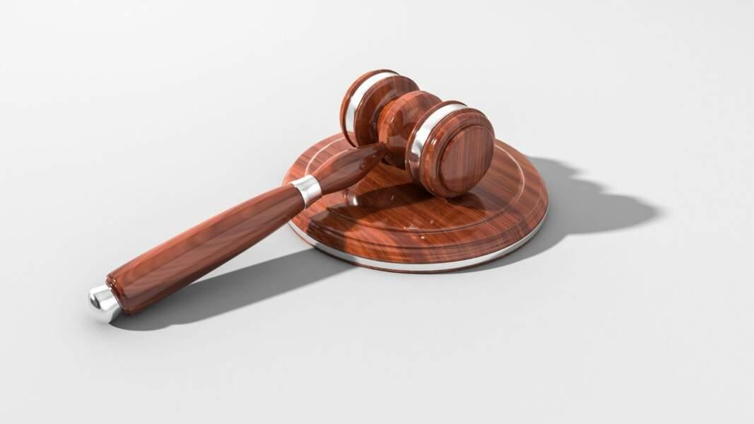11. Administrateur liquidateur judiciaire : 9.180 euros par mois