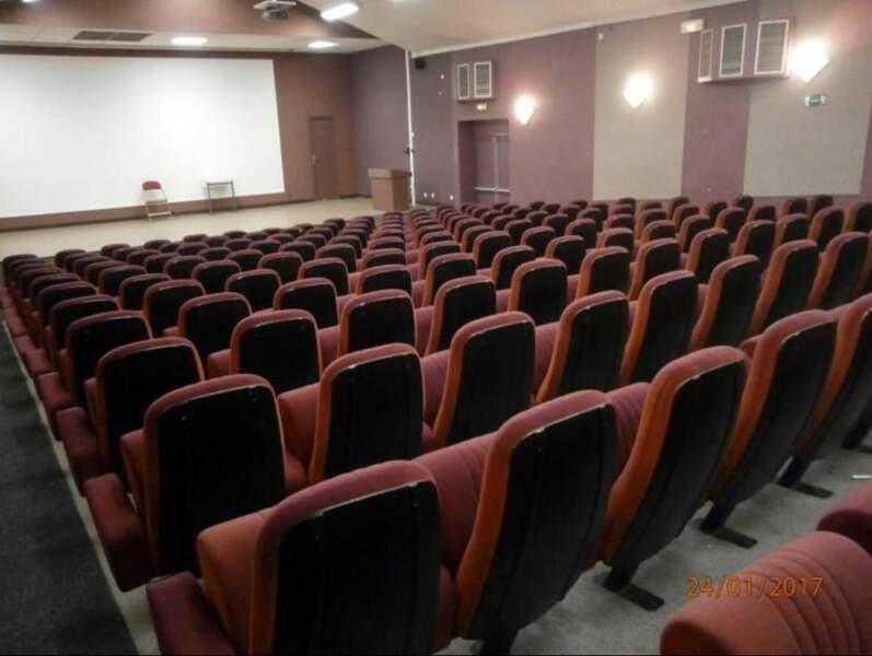 196 fauteuils de cinéma de Dinan vendus pour 1.500 euros.